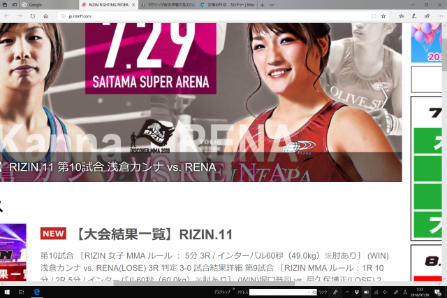 rizin[2].png